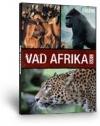VAD AFRIKA 2. BBC