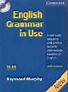 ENGLISH GRAMMAR IN USE THIRD EDITION