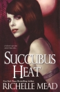 SUCCUBUS HEAT (GEORGINA KINCAID - BOOK 4.)