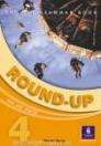 ROUND-UP 4. ENGLISH GRAMMAR BOOK