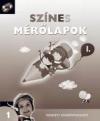 SZÍNES MÉRŐLAPOK 1. NT-00173/E