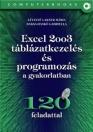 EXCEL 2003 TÁBLÁZATKEZELÉS ÉS PROGRAMOZÁS A GYAKORLATBAN+CD