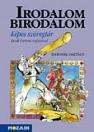 IRODALOM BIRODALOM - KÉPES SZÖVEGTÁR MS-2119K